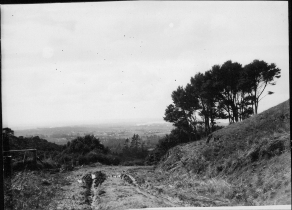 View from Titirangi.,Garlick, Una, 1883-1951, photographer,PH-NEG-14046